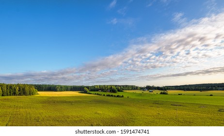 Finland pastoral countryside landscape with green-yellow cereals fields and barns surrounded by forest.
