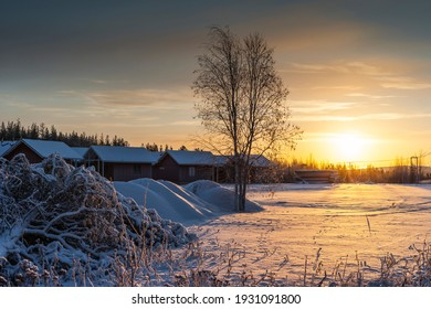 Finland. Province of Lapland (Lapin lääni). Winter midday near Rovaniemi, on the Arctic Circle.