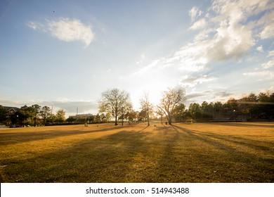 Finlay Park