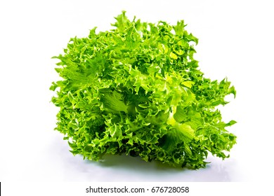 Finlay salad leaf shaped the incredible and beautiful.