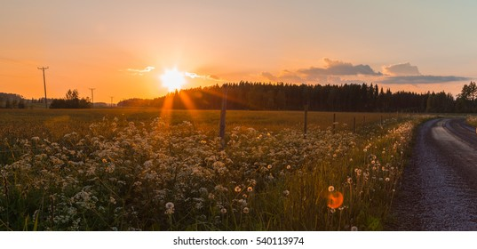 Finnish countryside at sunset. Mild lens flare as an artistic element.