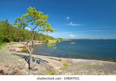Finnish summer landscape,, sunny day