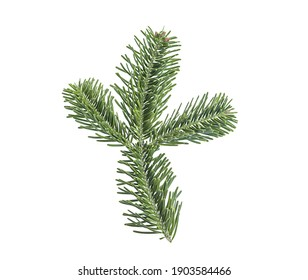 Fir branch isolated on white background. Christmas tree, pine, winter.