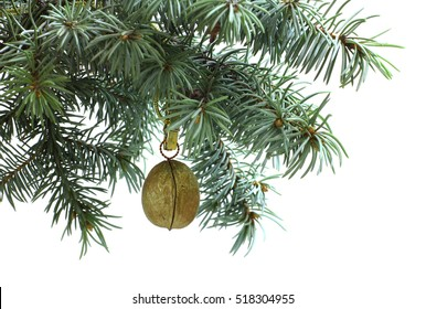 Fir tree branch isolated on white background with gold walnut in top frame corner. New Year and Christmas blank template. Big white copyspace place for text or logo.