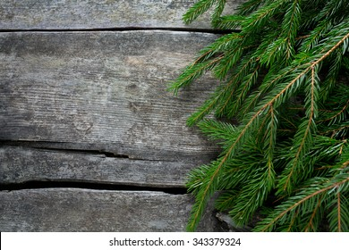 fir tree branch on wooden surface