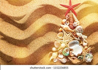 Fir tree made of sea shells