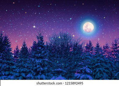 Fir trees covered with hoarfrost and full moon. Forest in the frost.Christmas card.