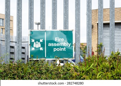 Fire assembly point sign on a metal fence  above a hedge
