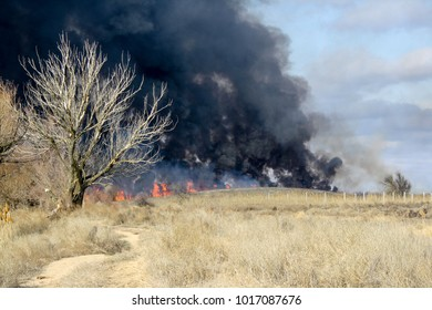 Fire in the autumn steppe