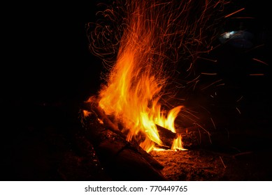 Fire. Burning dry twigs. Night in the woods around the campfire.