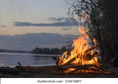 The fire is burning in the evening in nature on a sandy beach by the river at sunset in the evening next to the wood and bushes.