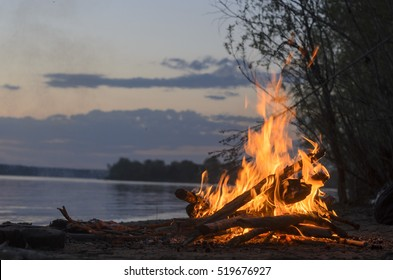 The fire is burning in nature the night on a sandy beach by the river and bushes.