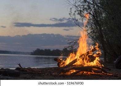 The fire is burning in nature. Russia. Siberia.