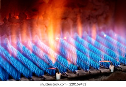 The fire burns from a gas burner. Blue flame when burning gas.
