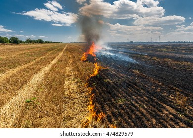 Fire burns stubble on the field