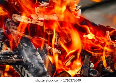 Fire with coals and fire on nature picnic background. Burns out a bonfire for food on the street