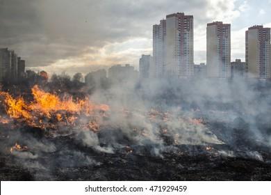 Feuer auf dem Feld in der Nähe der Stadt (Kiew, Ukraine).