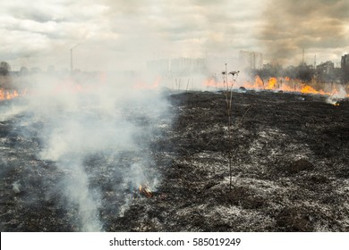 Fire in the field near the city (Kyiv, Ukraine). High city buildings and smokestack of the cogeneration plant in the background.