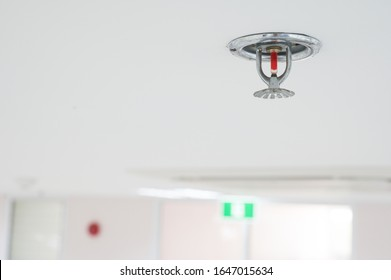 Fire fighting equipment, sprinkler on white ceiling background.Automatic head fire sprinkler extinguisher selected focus on sprinkler.Fire fighter safety concept.