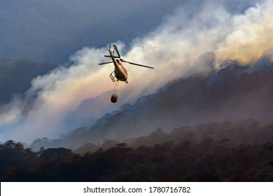 Fire fighting helicopter carry water bucket to extinguish the forest fire