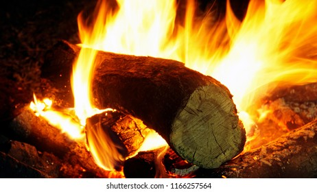 Fire and flames burning of weed wood or bonfire indoor outdoor heat