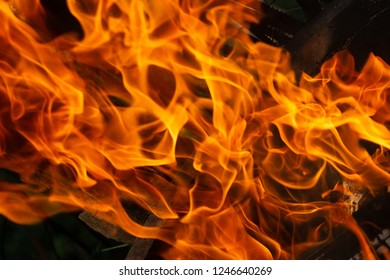 Fire flames on black background. Fire background, on fire abstract