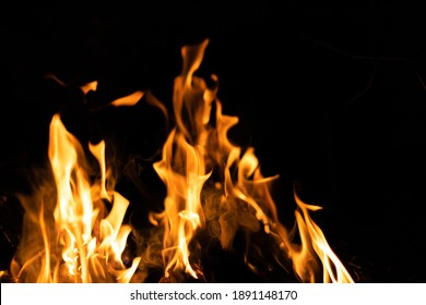 Fire flames on a black background. Abstract fiery texture. Realistic fire flames burn movement frame. Texture for Design. The texture of fire. Fire flames background. Blazing campfire. Sensitive focus