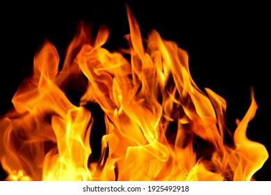 Fire flames on black background. The fire in the natural forest, flames and sparks on a dark background Fuel , lights on a black background.
