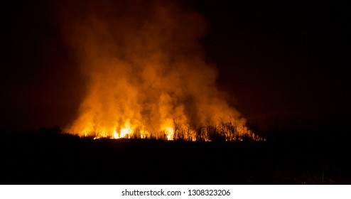 Fire flames with smokes around an agricultural field at night