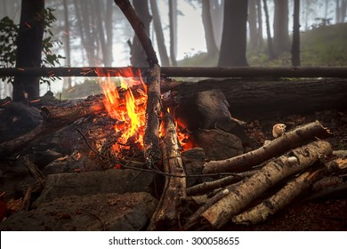 Fire in foggy wood
