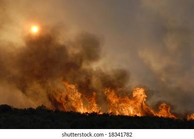 Fire in forests - sun hidden - destruction - europe
