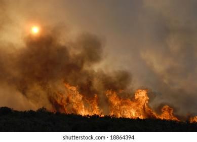 Fire in forests - sun hidden - destruction