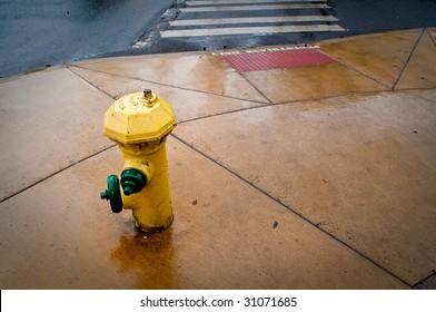 Fire hydrant on wet sidewalk