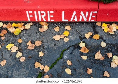 Fire Lane sign stenciled on a cement curb next to asphalt drive and yellow cottonwood leaves