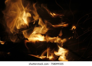 Fire. Languages of flame. Night fire.