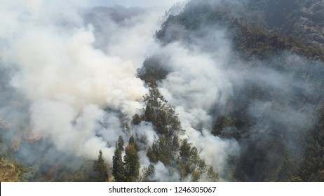fire in mountain forest. aerial view forest fire and smoke on slopes hills. wild fire in mountains in tropical forest, Java Indonesia. natural disaster fire in Southeast Asia