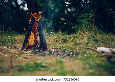 the fire on the nature