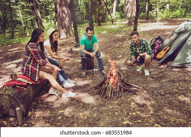 Fire place, four cheerful serene tourists are sitting around, roasting the marshmallows, nice sunny day, campsite