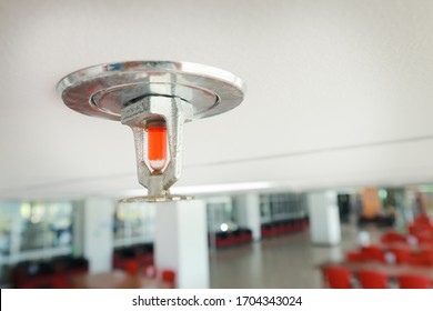 Fire sprinkler on the white ceiling install in the office.