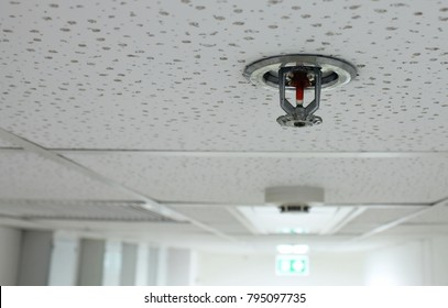Fire Sprinkler and Smoke Detector installed in the building.