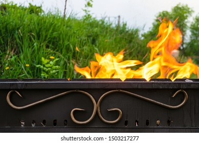 Fire in a steel barbecue. Profile view.