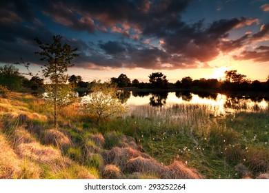 fire sunset on wild lake, Kampina, Netherlands
