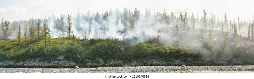 Fire in the taiga. Panorama of a natural disaster in the Polar Urals.