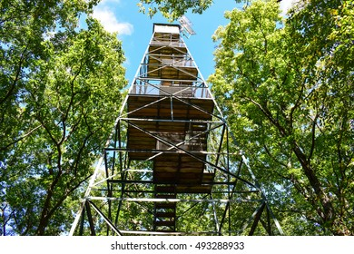 Fire Tower at Cook Forest Pennsylvania.