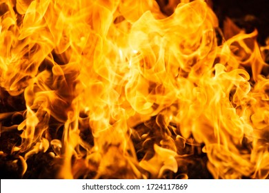 Fire,Camp fire background,wildfire burning timber