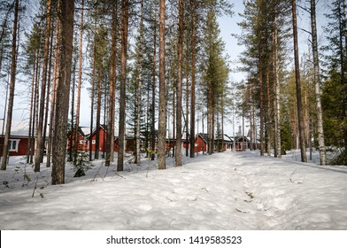Firecamp in Lapland forests in winter