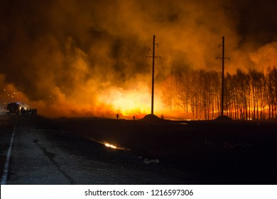 Firefighters extinguish a forest fire. Forest fire at night. The forest is burning.