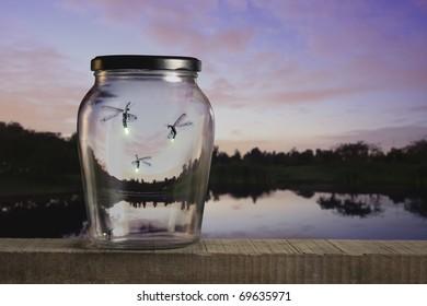 fireflies in a jar at sunset