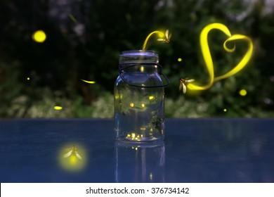 Fireflies in love.