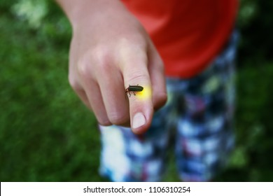 Firefly on a child's finger